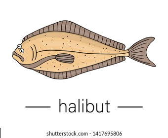 Vector colored halibut. Cartoon style sea fish icon. Underwater illustration