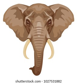 vector colored illustration of an African elephant head. front view