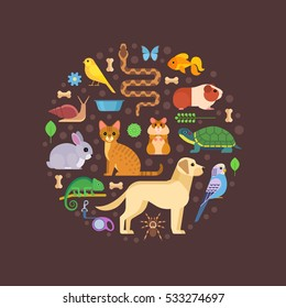 Vector colorful collection of pets, including dog, cat, rabbit, tortoise, parrot, snake, guinea pig, chameleon, hamster, tarantula and canary arranged in a circle, isolated on dark background.