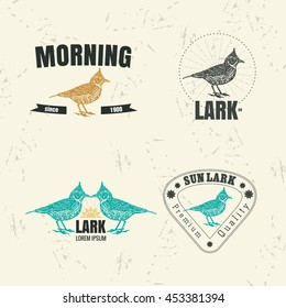 Vector colorful logo set with desert Crested lark bird. The lark bird as main element of logotypes on beige background.