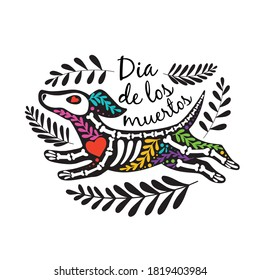 Vector colorful postcard. Dia de los Muertos, Day of the dead or Halloween concept. Flying dog skeleton, with floral design, isolated on white background