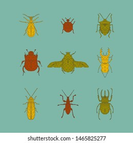 Vector colorful set of bugs and beetles in low poly style. Firebug, ladybug, bug, dung-beetle, rose beetle, stag beetle, firefly, weevil beetle, rhinoceros beetle.