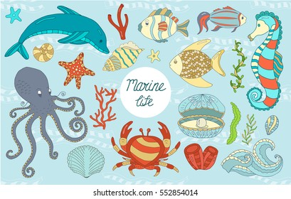 Vector Colorful wild sea life shell, jellyfish, fish, starfish, octopus, whale, dolphin, seahorse. Elements background set.