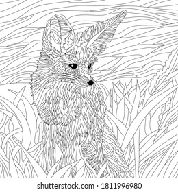 Vector coloring illustration with  fox portrait. Wildlife animal image. Drawing eared fox. Black illustration.Colouring page. Nature print. Monochrome line drawing