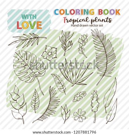 Vector Coloring Page Antistress Tropical Plants Stock Vector
