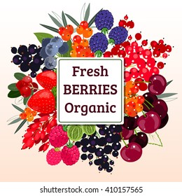 Vector composition of fresh berries. Poster, logo, illustration for packaging, brochures. Design elements for the farm shop, agricultural fairs, farmer's market, a wholesale supplier