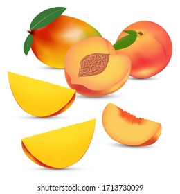 Vector composition of peach and mango on a white background. Bright saturated color. Realistic performance.