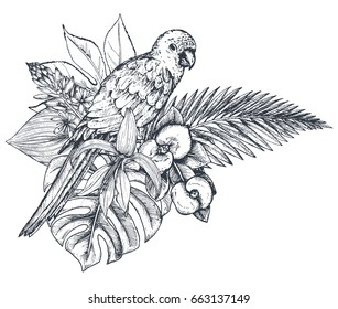 Vector composition of tropical flowers, palm leaves, jungle plants, paradise bouquet with exotic bird. Beautiful black and white floral vector illustration isolated on white background in sketch style