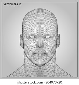Vector concept or conceptual 3D wireframe human male or man head isolated on gray background