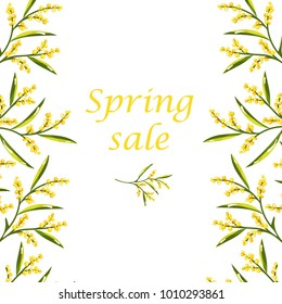 Vector concept of Spring sale flyer with mimosa flower