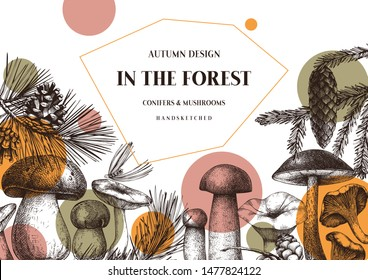 Vector conifers and mushrooms design. Hand drawn autumn forest template. Vintage plants sketches. Perfect for banner, label, icon, packaging. Vintage mushrooms background. Botanical illustration.