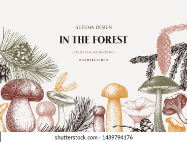 Vector conifers and mushrooms design. Hand drawn autumn forest template. Vintage plants sketches. Perfect for recipe, menu, label,  packaging. Vintage mushrooms background. Botanical illustration.