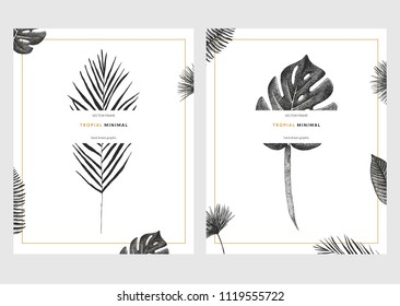 Vector contemporary greeting card set with tropical graphics in vintage style. Hand drawn collection of exotic plant template for birthday, business, anniversary, wedding, party invitation, holidays.