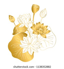 vector contour color gold white lotus asian flower symbol peace on white