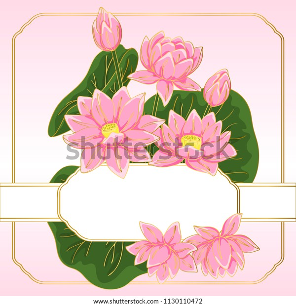 Vector Contour Color Pink Chinese Lotus Stock Vector Royalty Free