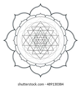vector contour monochrome design mandala sacred geometry illustration sri yantra lotus isolated white background