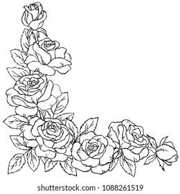 vector contour rose flowers bud leaf branch bouquet coloring book pattern elements corner frame border
