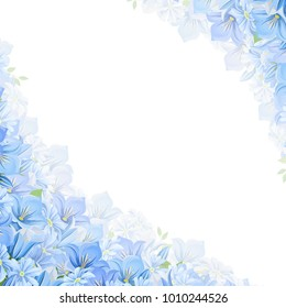 Vector corner background with blue flowers.