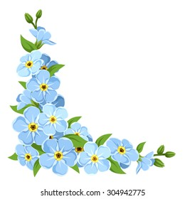 Vector corner with blue forget-me-not flowers on a white background.