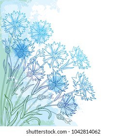 Vector corner bouquet with outline Cornflower or Knapweed or Centaurea flower, bud and leaf in blue on the textured pastel background. Ornate contour Cornflower bunch for summer design.