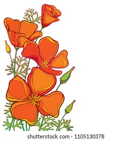 Vector corner bouquet of outline orange California poppy flower or California sunlight or Eschscholzia, green leaf and bud isolated on white background. Ornate contour poppies for summer design.