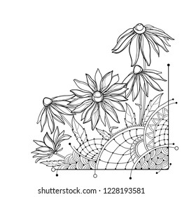 Vector corner bunch with outline Rudbeckia hirta or black-eyed Susan flower, ornate leaf and bud in black isolated on white background. Contour Rudbeckia bouquet for summer design and coloring book.