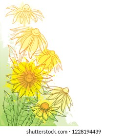 Vector corner bunch with outline Rudbeckia hirta or black-eyed Susan flower, ornate leaf and bud in yellow and green on the pastel textured background. Contour Rudbeckia bouquet for summer design.