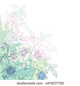 Vector corner bunch of outline toxic Atropa belladonna or deadly nightshade flower, bud, berry and leaf in pastel green on the white background. Poisonous contour Belladonna plant for herbs design.