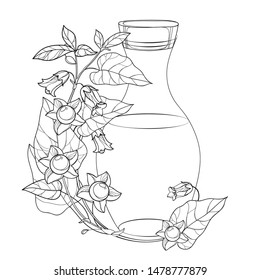 Vector corner bunch with outline toxic Atropa belladonna or deadly nightshade flower, berry, leaf and bottle in black isolated on white background. Poisonous contour Belladonna for coloring book.