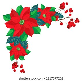 Vector corner of poinsettia and holly on a transparent background