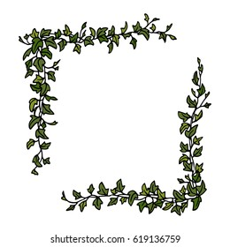 Vector corner set made of hand drawn english ivy branches. Beautiful floral design elements.