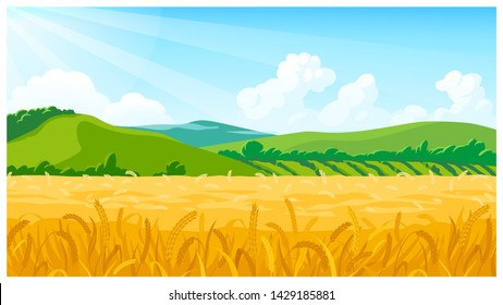 Vector country rural sunny landscape scene with wheat field, green hills and clouds cartoon style
