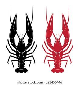 Vector crayfish isolated on white background