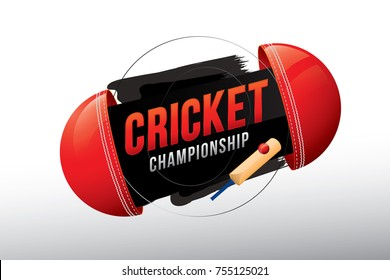 Vector of cricket championship badge design with wood cricket bat and balls.