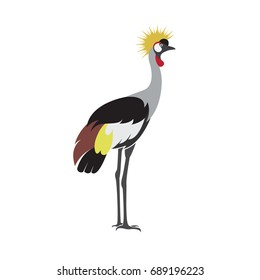 Vector of crowned crane bird design(African Crowned Crane)) on white background. Bird Icon