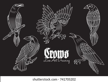 Vector Crows Line Art Tattoo Sketches