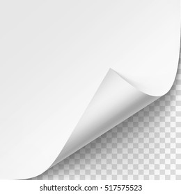 Vector Curled corner of White paper with shadow Mock up Close up Isolated on Transparent Background