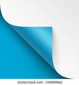 Vector Curled corner of White paper with shadow Mock up Close up Isolated on Bright Blue Background