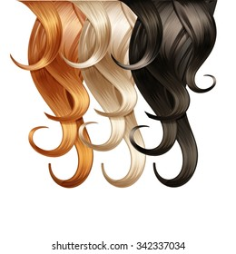 Vector Curly Hair Palette Isolated on White Background
