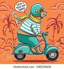 vector cute animal bear motorcycle drawing t shirt graphic print design