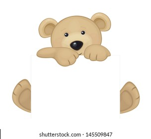 Vector of cute brown bear hiding by blank.