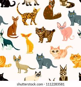 Vector cute cat. Cartoon animal seamless pattern. Illustration  breeds of cats