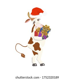 Vector of cute cow in Santa Claus hat with gift boxes.Isolated element for New Year 2021 festive design.