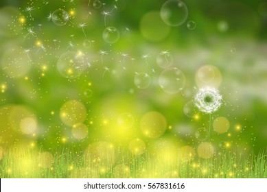 Vector Dandelion blowing in the sun nature green background