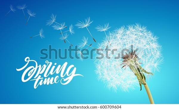 векторный одуванчик с летающими семенами на облачном небе