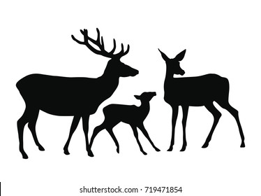 A vector dark silhouette deer family - deer, little fawn and doe. Each one of them is isolated on white background so you can use just one of them if you want.