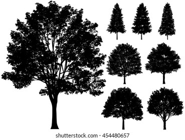 Vector deciduous trees isolated on a white background. front view.