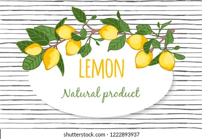 Vector decorative background with lemons, a place for an inscription.