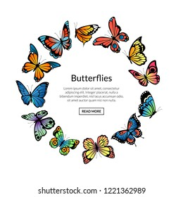 Vector decorative butterflies in circle shape with place for text illustration. Butterfly decoration on round, beauty insect