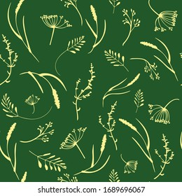 Vector decorative pattern with different plants herbs wildflowers for your design